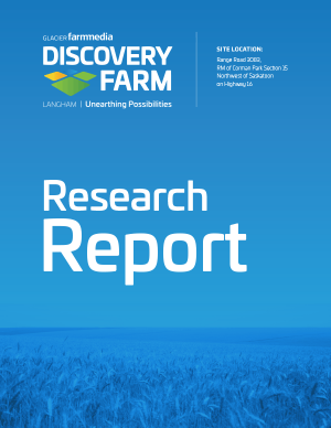 df-report-cover